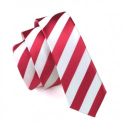Pánská hedvábná slim kravata